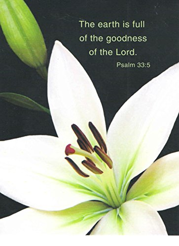 Religious Set Of 8 Blank Notecards   The Earth Is Full Of The Goodness Of The Lord  Psalm 33 5 With White Lily  4  X 5 25   White Envelopes