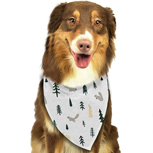 OURFASHION Rabbit and Squirrel Bandana Triangle Bibs Scarfs Accessories for Pet Cats and Puppies.Size is About 27.6x11.8 Inches (70x30cm). -