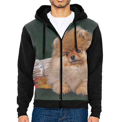 (DORMA Mens Womens Hooded Sweatshirt Realistic 3D Print Pomeranian Puppy Pullover Hoodie with Big Pockets)