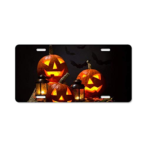 YEX Abstract Holiday Halloween Jack-o-Lantern Leaf Lantern5 License Plate Frame Car Licence Plate Covers Auto Tag Holder 6