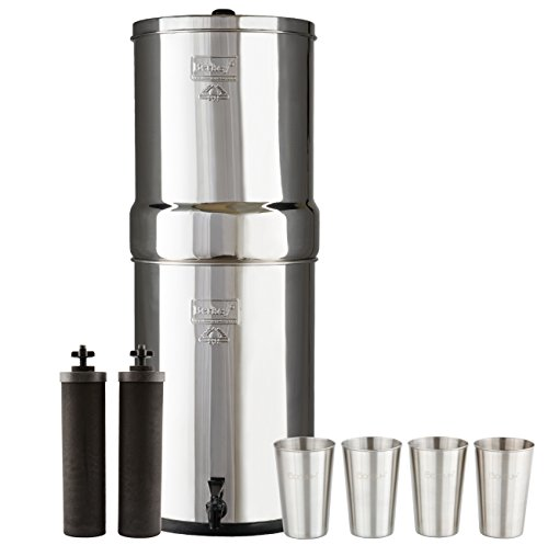Bundle Includes Crown Berkey Water Filter System with 2 Black Purifier Filters (6 Gallons) Bundled with 1-Set of 4 BX 12 oz Stainless Steel Cups