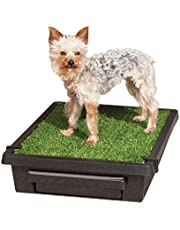 PetSafe Pet Loo Portable Outdoor or Indoor Dog Potty - Dog Grass Pad with Tray - Alternative to Puppy Pads - Easy to Clean Dog Potty Grass, Absorbent Wee Sponge, Pee Pod - Small, Medium, Large