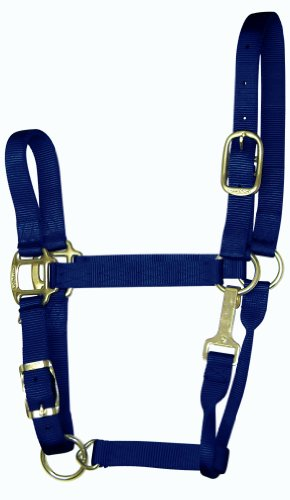 Quality Horse Halter - 7