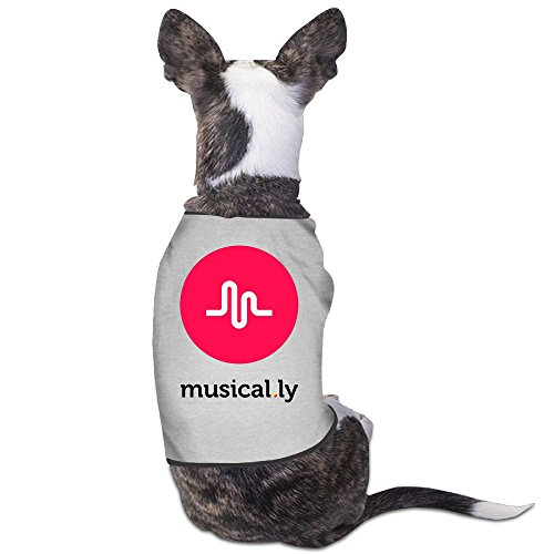 YRROWN Musical Ly Puppy Dog Clothes (Halloween In Indiana)