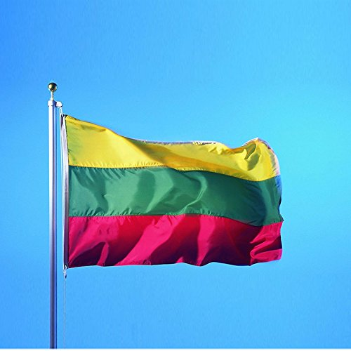 5x3FT Large Lithuania Lithuanian National Flag Banner Mental Grommet Polyester Olympic Fan Supporter (Anna Large Bowl)