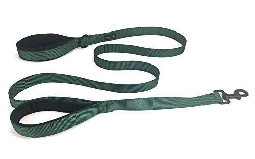 Waggin Tails Soft &Thick Dual Handle 6FT Dog Leash, Premium Strength Double Padded Handles - Great Control for Medium, Large or XLarge Dog (Hunter Green)