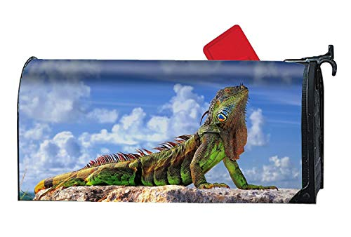 (Taocaihop Animal Iguana Lizards Stone Lizard Mailbox Makeover - Magnetic Cover)
