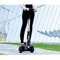 ION Rider eléctrico BI220 PRIME vehículo eléctrico velocidad