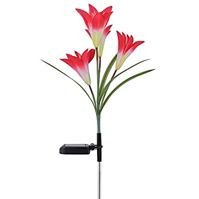 Outdoor Solar Garden Stake Lights Upgraded Solar Flower Lights with Lily Flower,Multi-Color Changing LED Solar Powered Lights for Patio,Yard Decoration,Bigger Flower and Wider Solar Panel