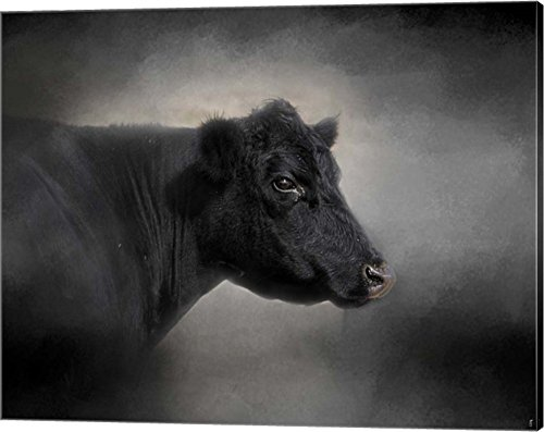 Portrait of The Black Angus by Jai Johnson Canvas Art Wall Picture, Gallery Wrap, 20 x 16 inches