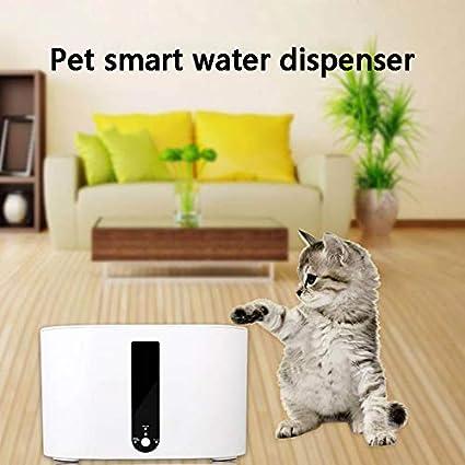 symboat fuente de agua para gato perro Filtro inteligente de bebida de dispensador de agua de