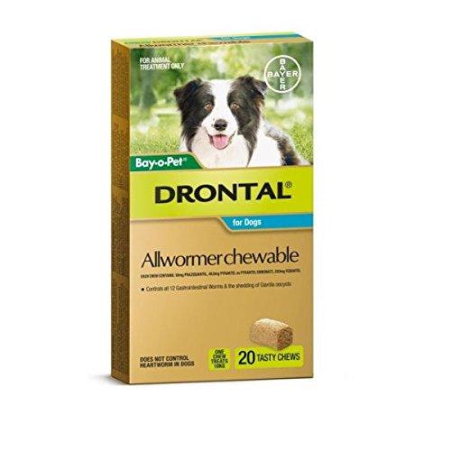 Drontal Allwormer Chews for Medium Dogs 20p
