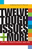 Twelve Tough Issues and More, Daniel E. Pilarczyk, 0867164611