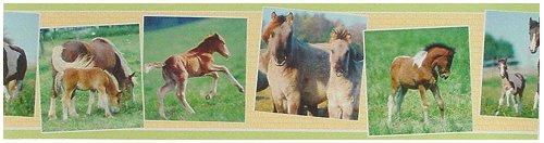 Emejing Pferde Bordüre Kinderzimmer Photos - Best Einrichtungs ...