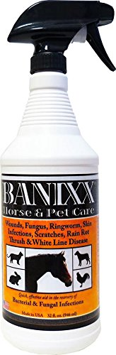 Banixx Horse and Pet Care 32 oz by Banixx