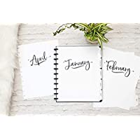 """2019 Monthly Calendar with Tabbed Dividers for Discbound Planners, 11-Disc Notebook, Fits Circa Letter, Arc by Staples, TUL by Office Depot, Letter Size 8.5""""x11"""" Whimsy (Planner Not Included)"""