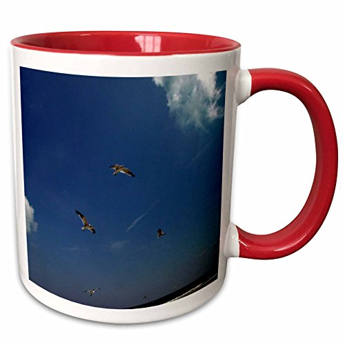 Gull Trio Sea (3dRose Dawn Gagnon Photography - Beach Scenes - Seagulls in flight, a trio flying against a vivid blue beach sky - 15oz Two-Tone Red Mug (mug_165598_10))