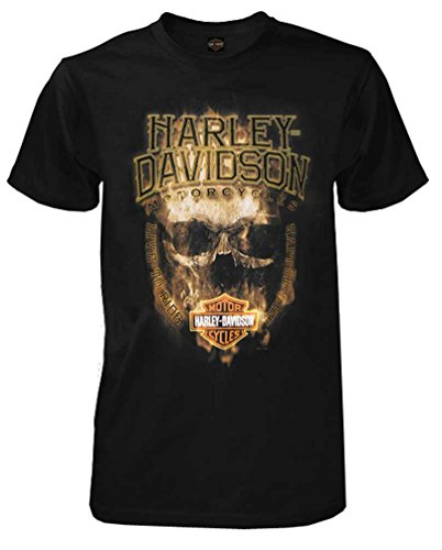 Man On Harley Davidson - 1