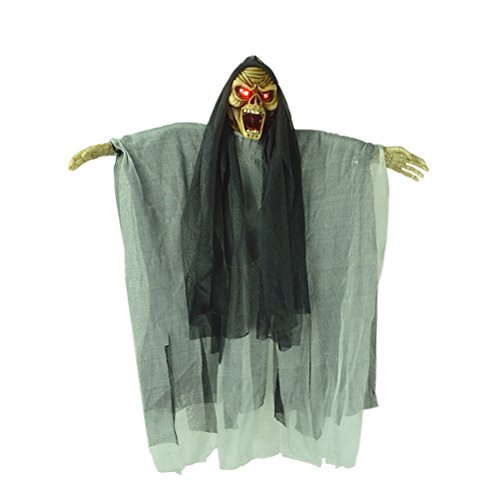 TOYMYTOY Hanging Talking Ghost Witch 18 Inch | Halloween Decorations - Sound and Flashing Eyes, Haunted House Party, Horror Theme Bar (Random (Halloween Horror Nights Sound Effects)