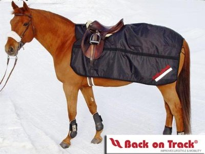 Back on Track Therapeutic Fleece Exercise Sheet 78