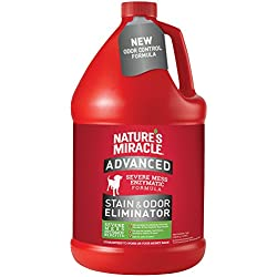 Nature's Miracle Advanced Stain and Odor Eliminator Gallon