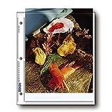 Print File 810-2P 8x10 Print Sleeves -