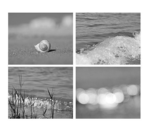 Ocean Beach Decor, Black and White Photography, Set of 4 Coastal Art Prints, Grey Photo Prints, Seashell, Beach Grass, Beach Light Abstract - 30% off discount by Natural Photography Spa