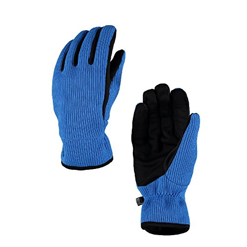 (Spyder Men's Stretch Fleece Conduct Glove, French Blue/Black,)