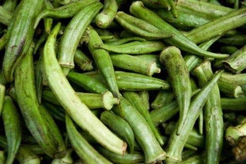 0.25 Ounce (130) Spineless Okra Seed Southern Gumbo Vegetable Seeds ()