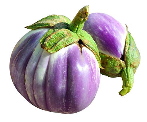 - 30+ ORGANICALLY GROWN Italian Rotonda Bianca Sfumata di Rosa Eggplant Seeds, Heirloom NON-GMO, Meaty, Purple and White, Not Bitter and Super Delicious, From USA