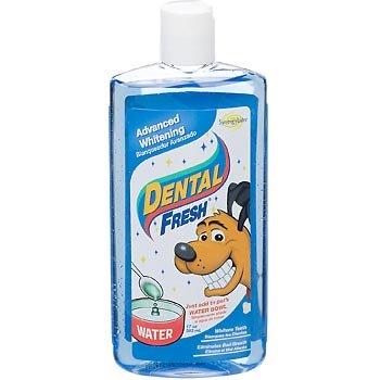 Dental Fresh Whitening - 17 oz by Dental Fresh (Image #1)