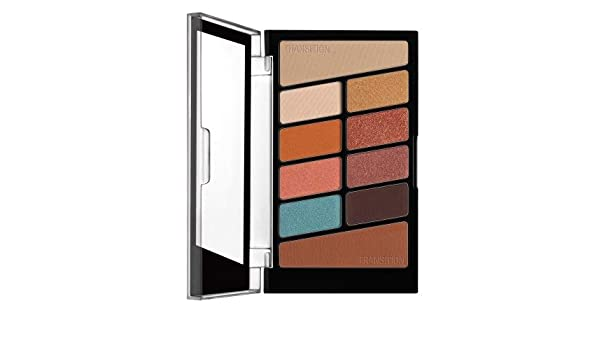 Amazon.com : Wet N Wild Color Icon 10-Pan Eyeshadow (Pack of 24) : Beauty