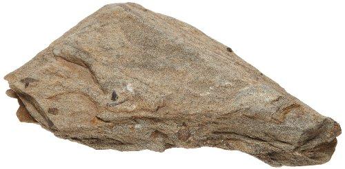 American Educational Crystals In Schist Staurolite Minerals, (Staurolite Crystal)