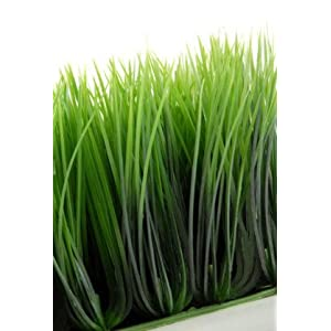 Wheat Grass Mats 10.5in Square Interlocking - Excellent Home Decor - Indoor & Outdoor 27