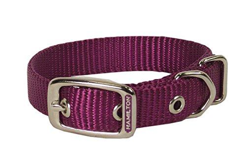 Deluxe Single Thick Nylon Collar - Hamilton Single Thick Nylon Deluxe Dog Collar, 3/4 by 20-Inch, Hot Pink