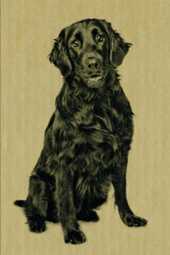 Flat-Coated Retriever: Artified Pets Dog Journal/Notebook/Diary (Artified Pets Flat-Coated Retriever)