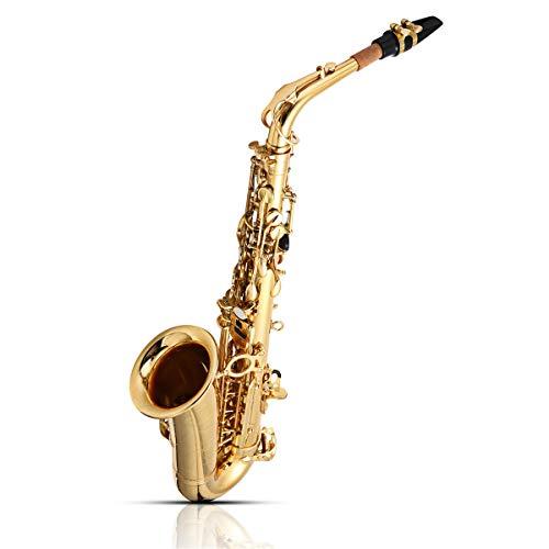 SGI Jupiter JAS-769 Gold Brass Alto EB Tune Saxophone with Bag Clean Tools