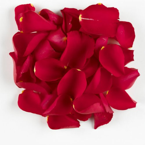 1 Pint of Red Passion Freeze Dried Rose Petal Confetti Truly Madly Deeply