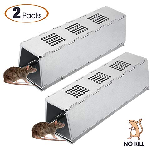 (Faicuk 2-Pack Chipmunk Trap Rat Trap Mouse Trap for Live Catch and Release Rodents, Collapsible and Easy to Use)