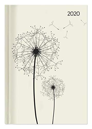 Buchkalender Style Blowballs 2020 - Bürokalender A5 - Cheftimer - 1 Tag 1 Seite - 352 Seiten - Terminplaner - Notizbuch - Pusteblume