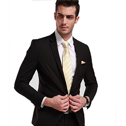 Landisun Mens Silk Neck Tie Set Floral and Stripe Pattern 18A79 ()