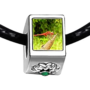 Chicforest Silver Plated Beautiful Lovely Dragonfly Photo Emerald Green Crystal May Birthstone Flower Charm Beads Fits Pandora Charms