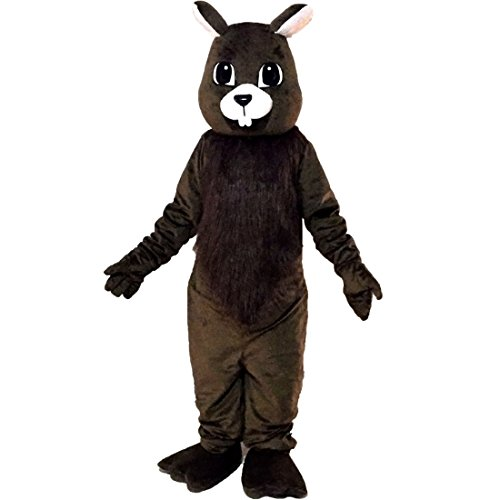 Brown Squirrel Mascot Costume Character