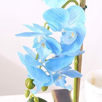 Phaleanopsis Arrangement with Vase Decorative Artificial Orchid Flower Bonsai (Blue)