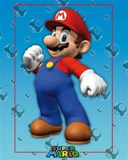 Nintendo Super Mario Video Game Poster