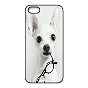Generic Case Chihuahuas For iPhone 5, 5S Q2A2213491