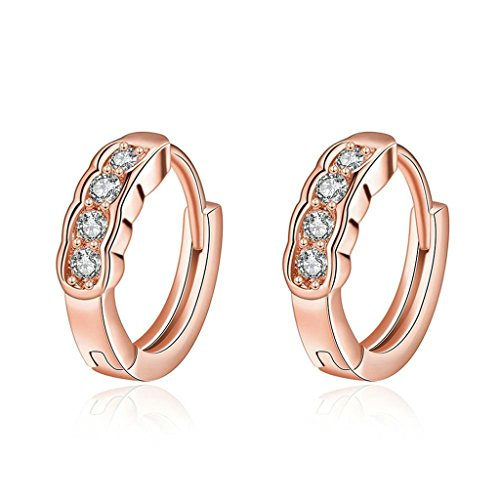 AmDxD Jewelry Gold Gold Plated Women's Earrings Channel Setting with CZ