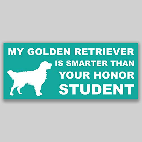 JMM Industries My Golden Retriever is Smarter Than Your Honor Student Vinyl Decal Sticker Car Window Bumper 2-Pack 7.5 Inches by 3 Inches Premium Quality UV Protective Laminate PDS1167