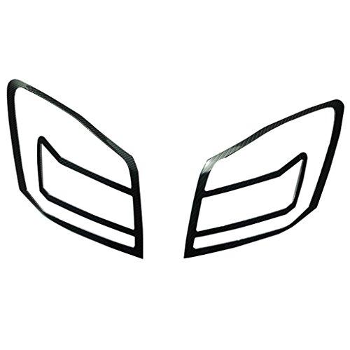 Honda Accord Carbon Fiber Tail - 2