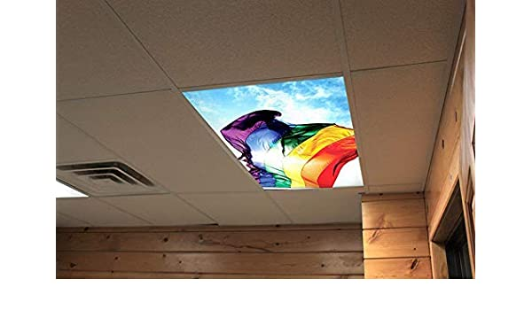 Flexible Fluorescent Light Cover Films Skylight Ceiling Office Medical Dental 35
